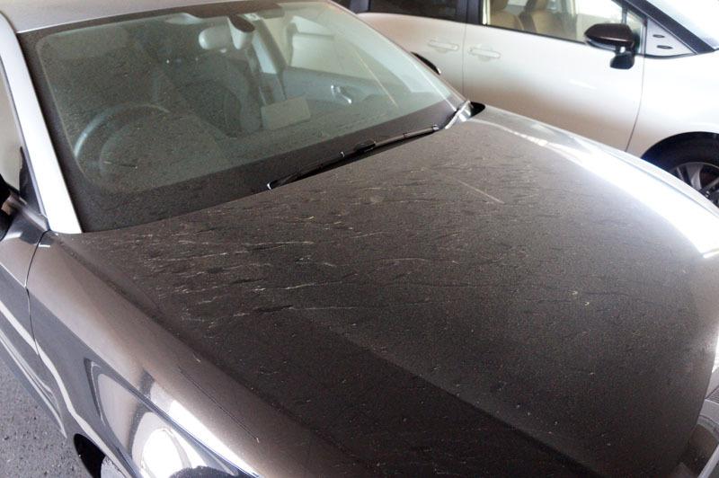 Audi 1.JPG