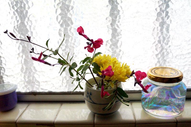 お家の花 2.JPG