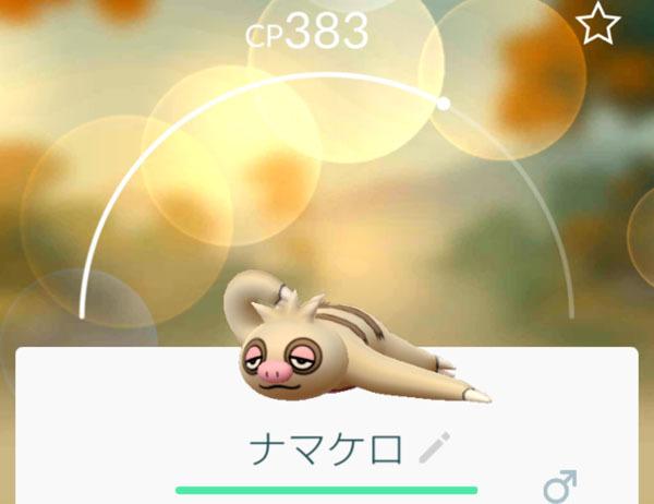 ナマケロ 2.jpg