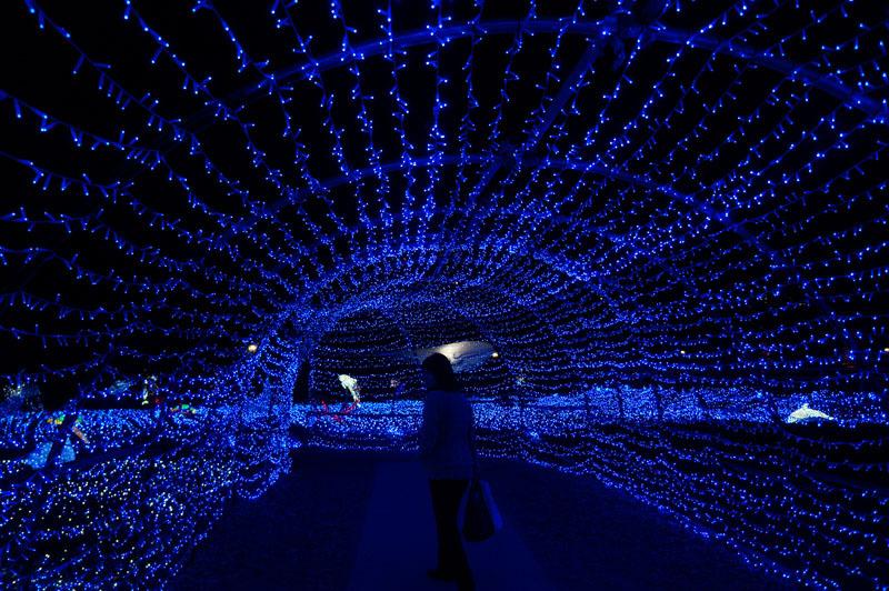 光の王国 世界最大1300万球の光の世界 14.JPG