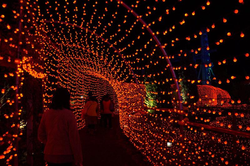 光の王国 世界最大1300万球の光の世界 15.JPG