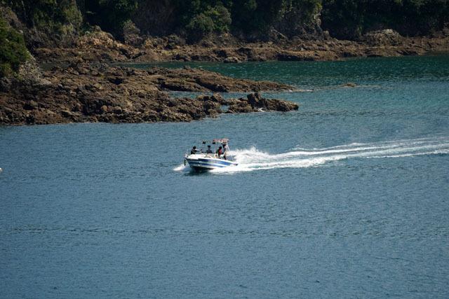 水上スキー 5.JPG