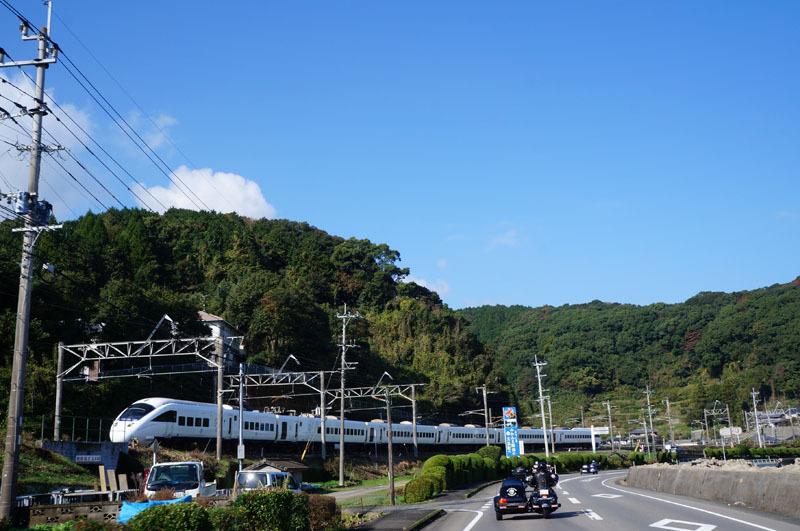白いカモメ.JPG