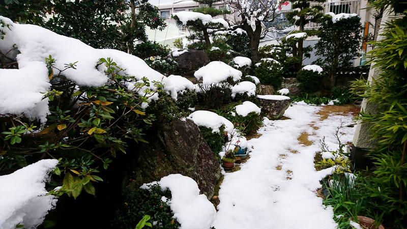 長崎 雪 2.JPG