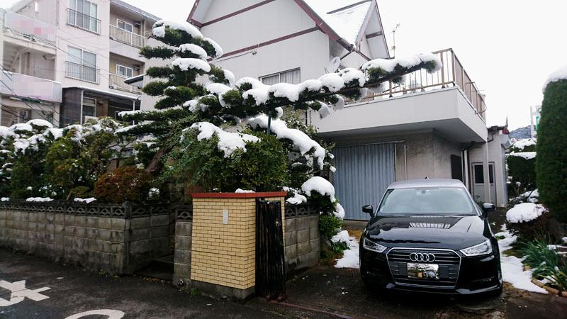 長崎 雪 3.JPG
