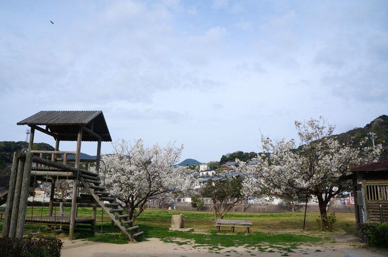 長崎市柿泊町 2.JPG
