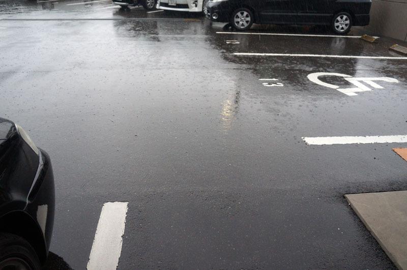 雨 2.JPG