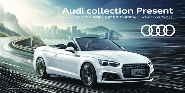 Audi collection present (1).jpg