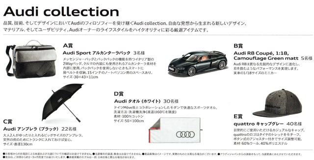 Audi collection present (2).jpg