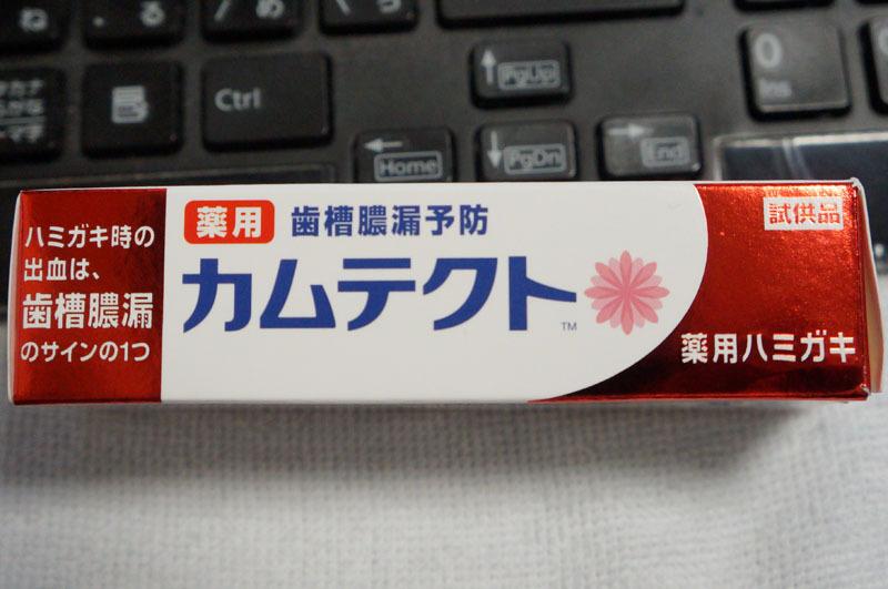 カムテクト-4.JPG