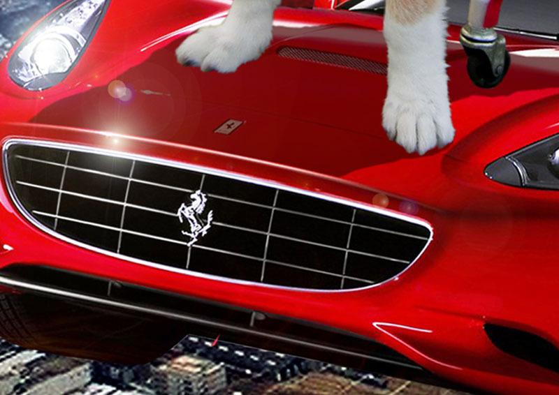 クーちゃんフェラーリで飛ぶ-フェラーリ.jpg