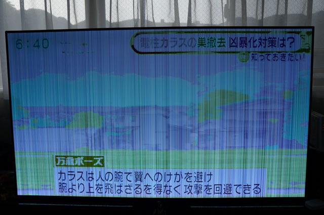 ソニー 55V型 有機EL テレビ ブラビア 画像トラブル (1).JPG