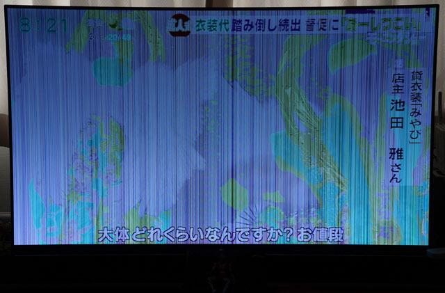 ソニー 55V型 有機EL テレビ ブラビア 画像トラブル (2).JPG