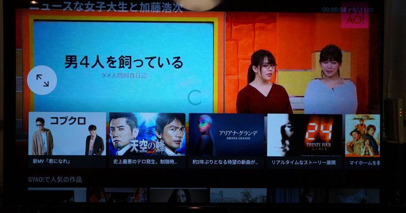 ソニー テレビ ブラビアA1シリーズ 10.JPG
