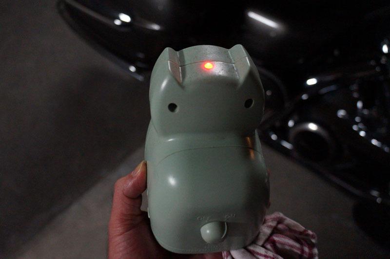 ネコちゃんしちゃダメ~! 2.JPG