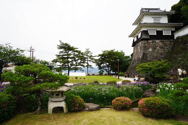 大村公園 花菖蒲園 3.JPG