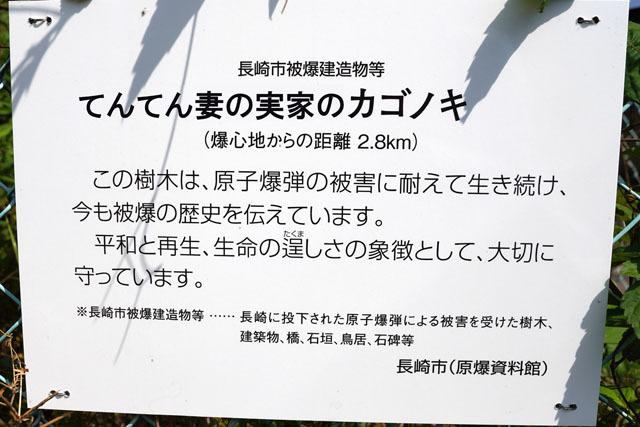 妻の実家 (6).JPG