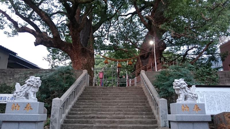 山王神社 被爆クスノキ 1.JPG