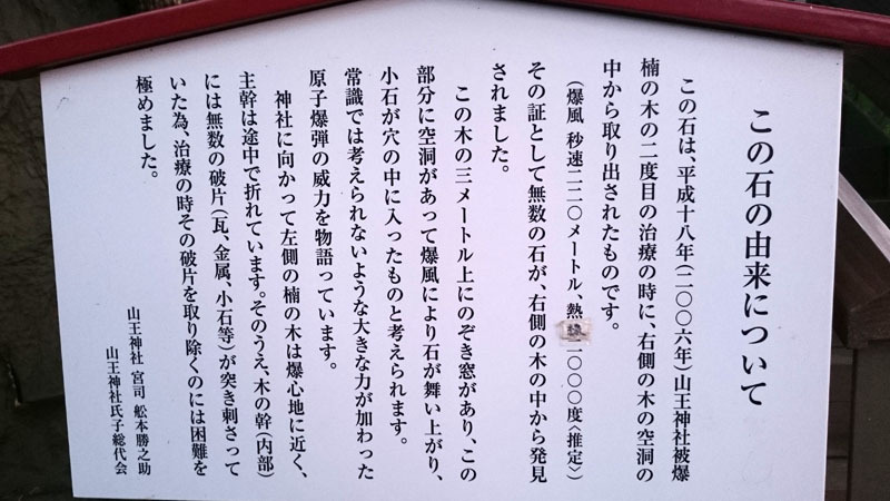 山王神社 被爆クスノキ 6.JPG