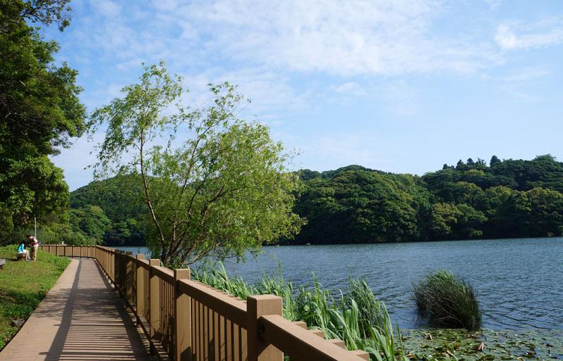 川原大池公園 6.JPG