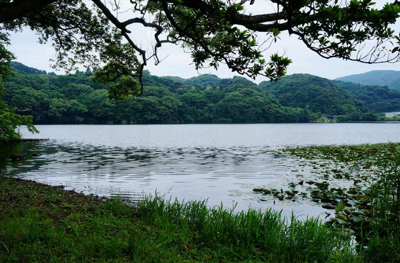 川原大池公園 2.JPG
