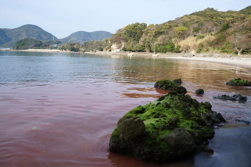 白浜海水浴場 21.JPG