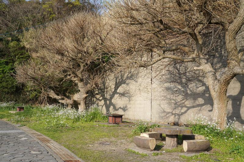 白浜海水浴場 26.JPG