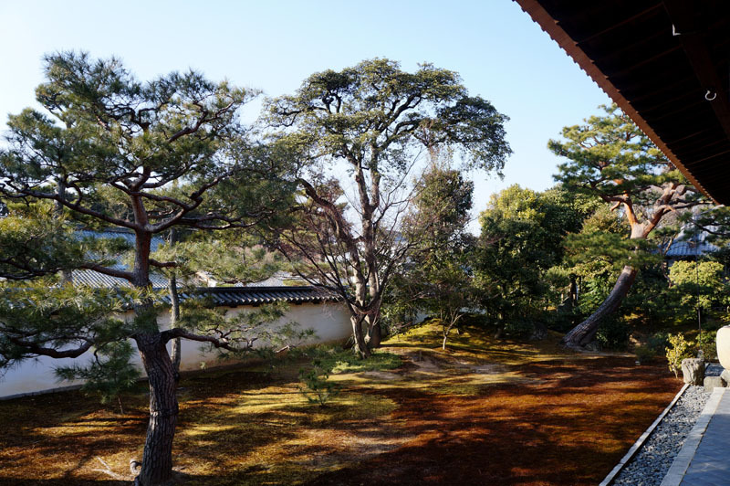 相国寺 4.JPG
