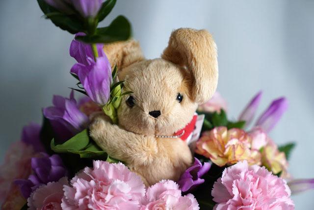 結婚記念日 花の贈り物 (10)-2.JPG