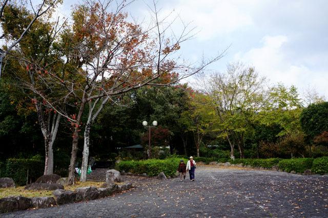 金立SA (上り) (5).JPG