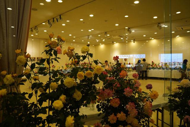 長崎ばら展 (9).JPG